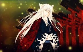Picture fireflies, guy, ears, long hair, Kamisaa The Hajimemashita, Very nice God, Tomoe