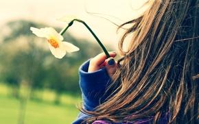 Picture girl, flowers, freshness, girls, mood, romance, mood, clothing, hair, tenderness, walk, daffodils