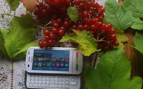 Picture leaves, smartphone, Kalina, slider, Nokia, horizontal, C6-00