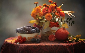 Picture autumn, pumpkin, fruit, still life, plum, Rowan, marigolds, zinnia