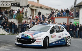 Picture Road, The city, People, Peugeot, WRC, Rally, Rally, The front, Fans, 207