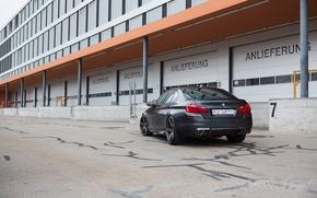 Picture black, the building, Windows, BMW, BMW, black, back, f10