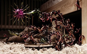 Picture tree, carpet, shoes, monster, shoes, 156