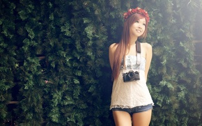 Picture Asian, wreath, coniferous wall, camera.