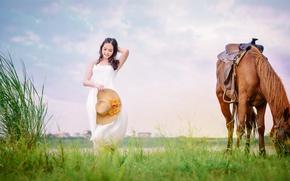 Picture field, grass, face, horse, horse, dress, walk, Asian