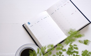 Picture plant, coffee, Cup, Notepad, diary