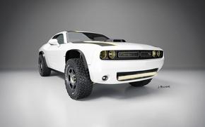Picture Art, Dodge Challenger, 2014, AT Untamed