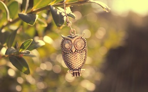 Picture leaves, macro, light, metal, owl, bird, branch