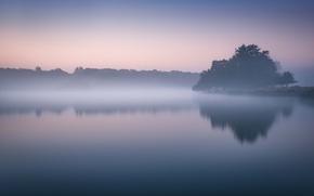 Picture lake, morning, fog, dawn, mist, lakeshore