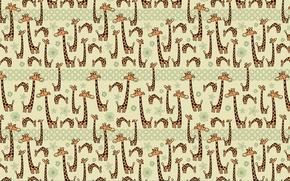 Picture humor, giraffes, Texture