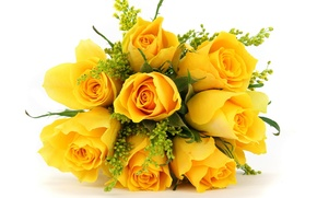 Picture flowers, roses, bouquet, yellow
