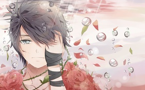 Wallpaper drops, roses, tears, art, tape, guy, wound, teichi