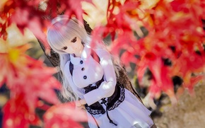 Picture sadness, autumn, leaves, doll