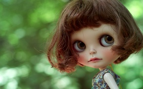Picture toy, doll, hairstyle