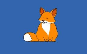 Picture minimalism, Fox, fox