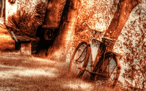 Picture bike, background, tree, texture, bench