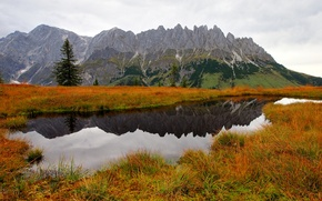 Picture autumn, grass, water, trees, mountains, nature, lake, spruce