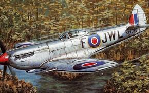 Picture war, art, painting, aviation, ww2, Supermarine Spitfire Mk Xvi E
