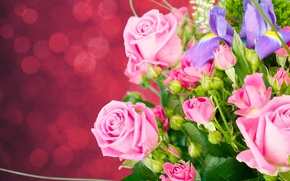 Picture background, roses, bouquet, buds, irises