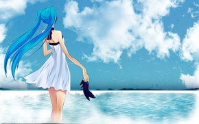 Picture sea, the sky, girl, birds, shoes, vocaloid, hatsune miku