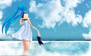 Wallpaper sea, birds, hatsune miku, girl, shoes, the sky, vocaloid