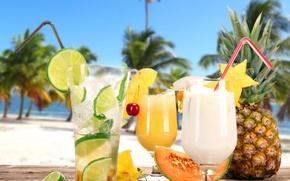 Picture beach, fresh, cocktails, fruit, drink, palms, tropical, cocktails