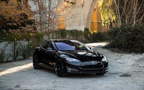 Picture machine, autumn, trees, optics, before, auto, Black, Tesla, Wheels, Model S, Concave, CW-S5, Gloss