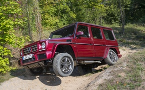 Picture Mercedes, AMG, AMG, W463, 2015, G 63, Mercedоs-Benz