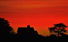 Picture house, trees, morning, sunrise, dawn, vegetation, silhouettes