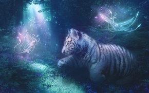 Picture Tiger, drawings, fantasy