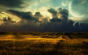 Wallpaper wheat, clouds, field, fields, nature, landscape, clouds