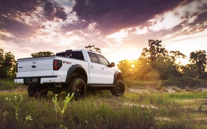Picture jeep, Ford, rear view, tuning, grass, F-150, white, F-150, trees, pickup, tuning, the sun, the ...