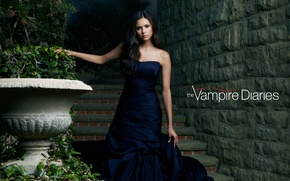 Wallpaper the vampire diaries, actress, Nina Dobrev