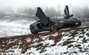 Picture Lamborghini, Black, Snow, LP700-4, Aventador, Road, Supercar, Fog