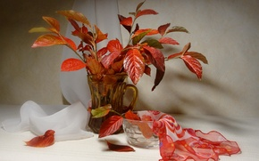 Picture style, background, still life