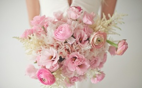 Picture flowers, tenderness, bouquet, the bride, Ranunculus