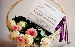 Picture flowers, tape, bouquet, basket, roses, flower, bow, notes, music, basket