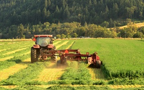 Picture field, forest, mountains, nature, work, harvest, cleaning, male, harvester, watering