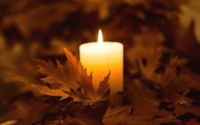 Picture autumn, leaves, fire, candle