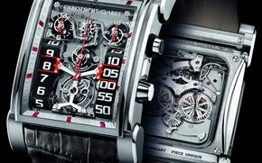 Picture watch, claret, dualtow