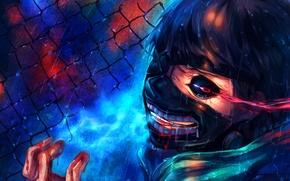 Picture anime, art, Tokyo Ghoul, Ken Kanek