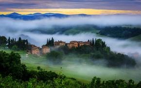 Picture greens, the sun, trees, nature, fog, sunrise, morning, Italy, Italy, Tuscany, Toscana, Tuscany, Vergelle
