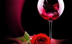 Picture wine, glass, rose, Roses, Valentines Day, Wine