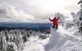 Picture Winter, Mountains, Forest, Snowboard