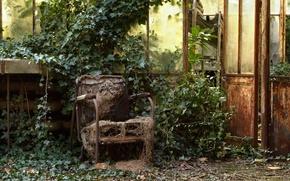 Wallpaper chair, the door, window