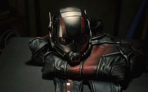 Picture costume, helmet, comic, Marvel, Ant-man, Ant-man