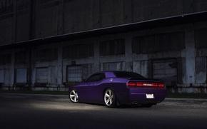 Picture Muscle, Dodge, SRT8, Challenger, Car, Purple, Rear