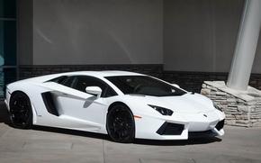 Picture Lamborghini, white, LP700-4, Aventador