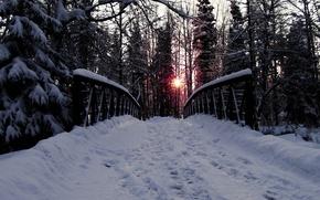 Picture road, forest, trees, bridge, Snow