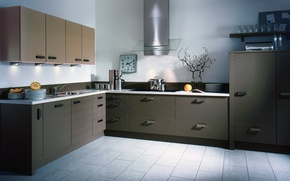 Picture style, grey, watch, kitchen, dishes, fruit, order